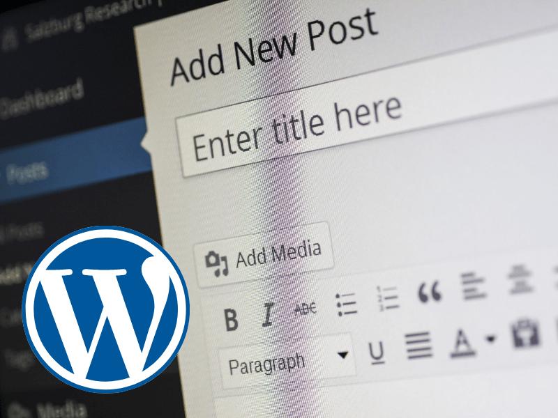 Die besten (echten) WordPress Alternativen, die du testen musst